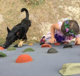 Nala And Caramia climbing